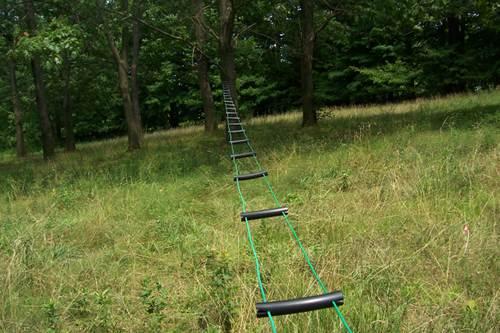 ladderline